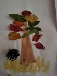 Тема недели «Урожай»