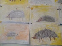 """Тема недели была (27.11-1.12.) """"Кто как готовится к зиме"""" (дикие животные)."""