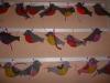 """Тема недели была """"Зимующие птицы"""" (12.12-16.12.16)"""